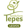 logo tepes - Home
