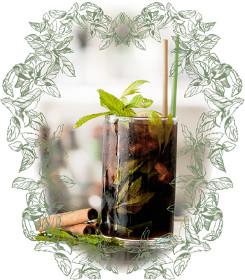 cocktail castro mojito - LIQUORE AL DIOSMO (ALLA MENTA) CASTRO