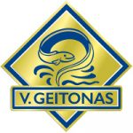logo v.geitonas